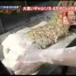 【大食い対決!】 ギャル曽根 VS 超巨大とんかつ
